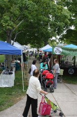 2013-jaycee-vendor-fair-019.jpg