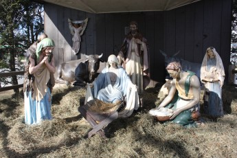 completed-nativity-030