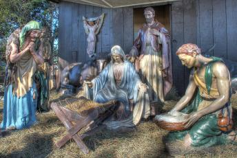 completed-nativity-034
