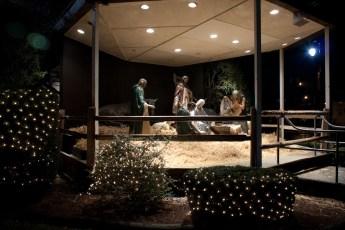 2012-nativity-setup-103