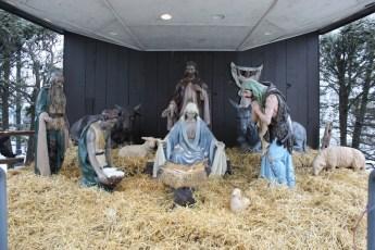 2012-nativity-setup-105