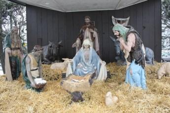 2012-nativity-setup-106