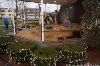 2015-nativity-setup-002