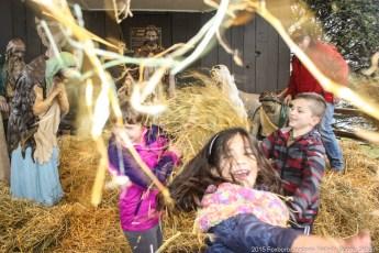 2015-nativity-setup-004