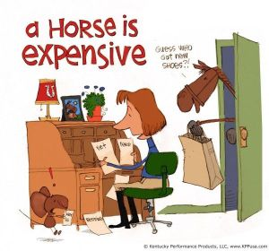 expensive horse