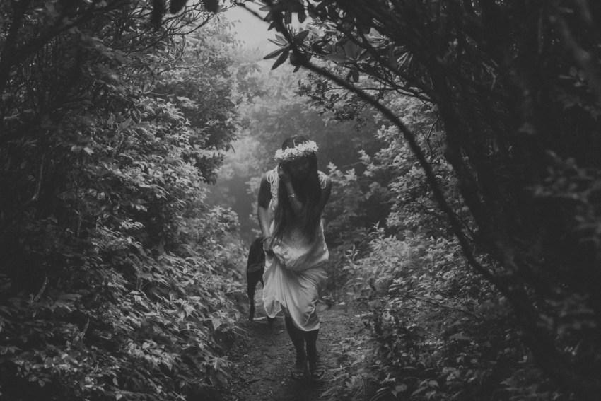 craggy gardens elopement photographer asheville nc
