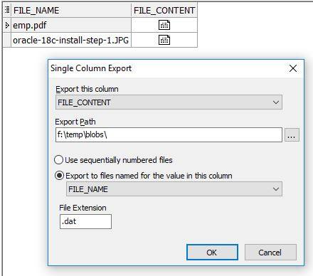 How to Extract BLOB Data From Oracle Using Toad? | Vinish