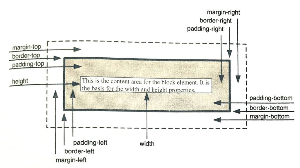 CSS Box Model.