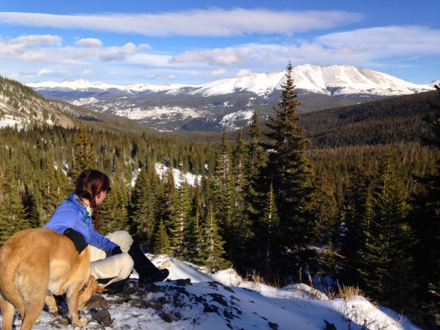 snowshoeing with a dog - break