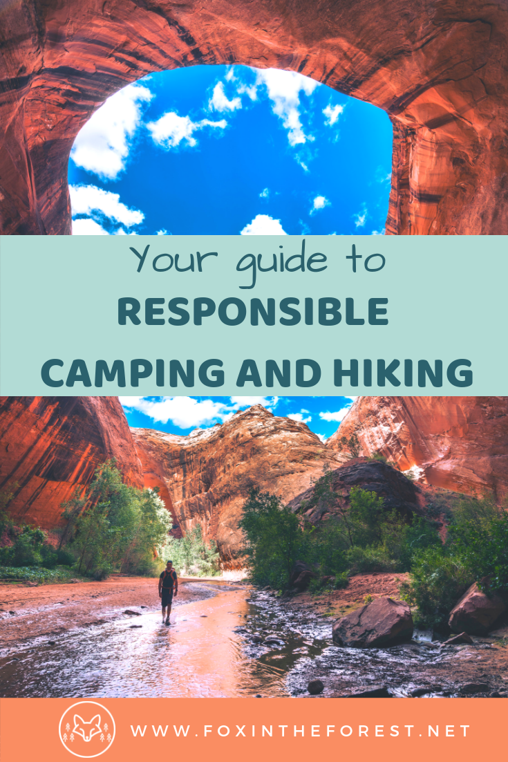How to practice Leave No Trace. Best practices for camping and hiking. Camping and hiking tips and tricks. Wilderness sustainability. How to go to the bathroom in the outside. How to pack out trash when you backpack, hike, and wild camp. #sustainability #camping #hiking #wildcamping #sustainabletravel