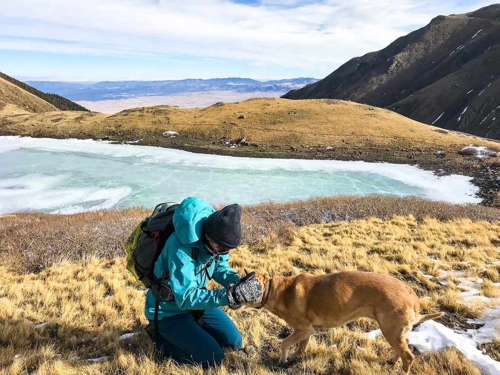 how to hike with a dog