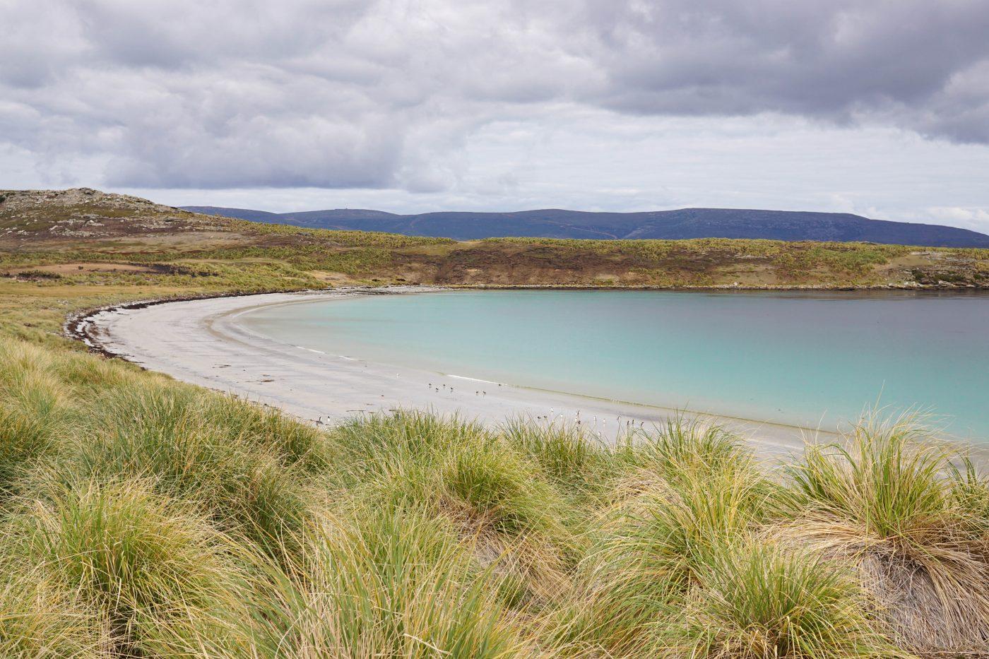 Hiking the Falkland Islands