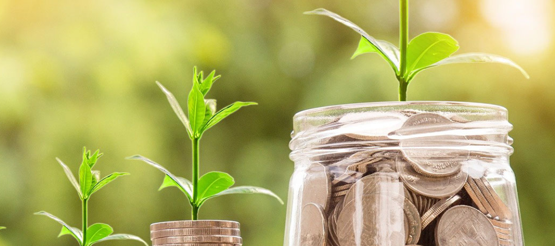 """two small stacks of coins with plant sprouts next to a jar of coins with a larger sprout against a sunny background with the text """"Stewardship 2021"""""""