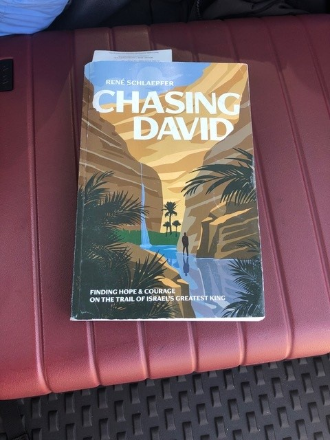 copy of the book Chasing David on a bench