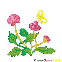 Clipart Fleurs Roses Gratuit