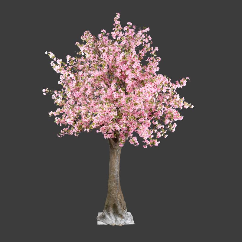 Bloesemboom  Fraai Projecten