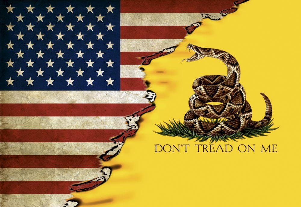 us gadsden flag 22