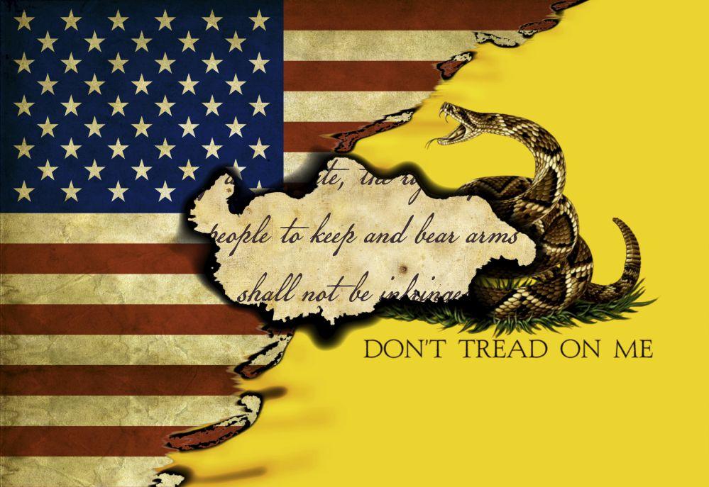 us gadsden flag 23