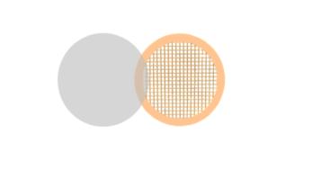 Carbon Film Coated Grids Square Mesh
