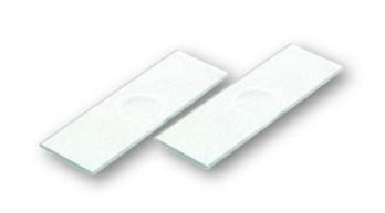 Glass Slides Concavity