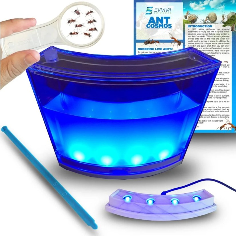 Ant-Habitat-with-LED-Light-from-Evviva-Sciences
