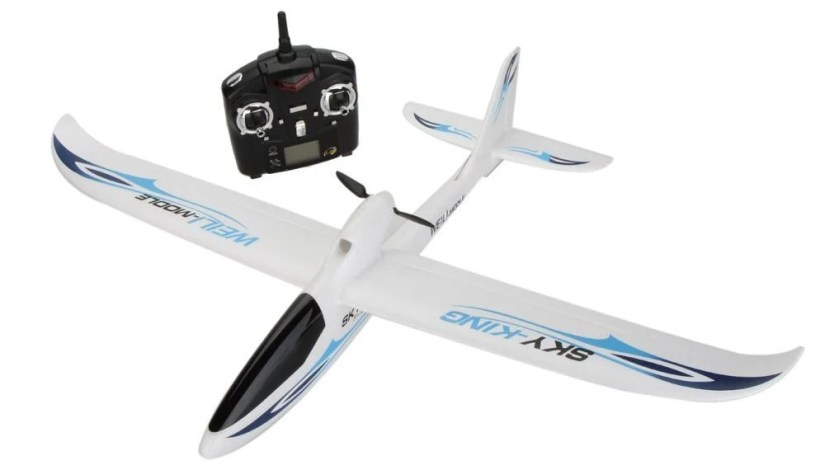 WL Toys F-959 Sky King RC Planes