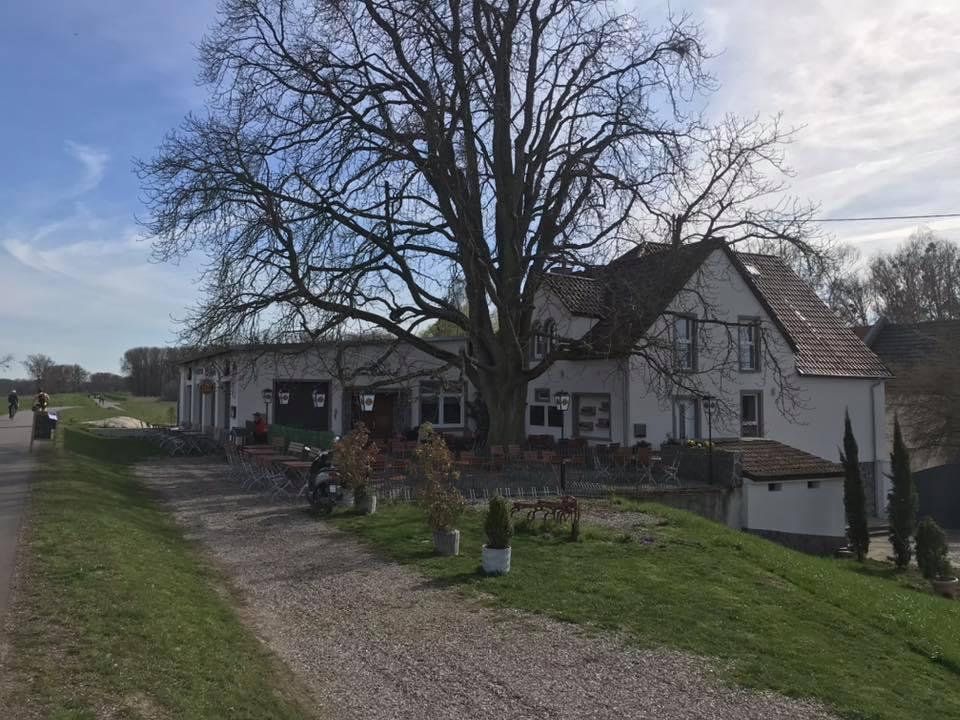 Rheinhof in Guntersblum