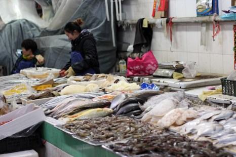 china-urlaub-erfahrungen-beijing-cooking-school-36