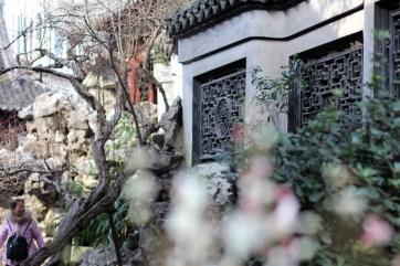 china-urlaub-erfahrungen-shanghai-schnellzug-Yuyan-Garten-stadtgotttempel-12