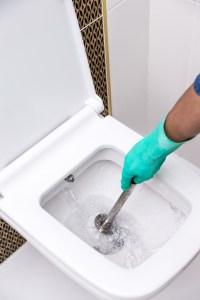 Kalk im WC entfernen mal anders Frag Mutti