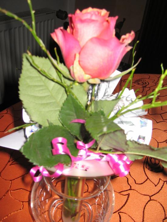 Geldgeschenk mit CD und Rose  Frag Mutti