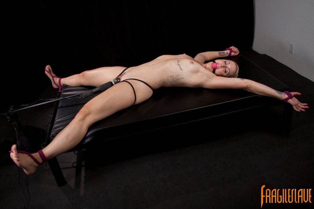 hot nude girls w big tits pics having sex