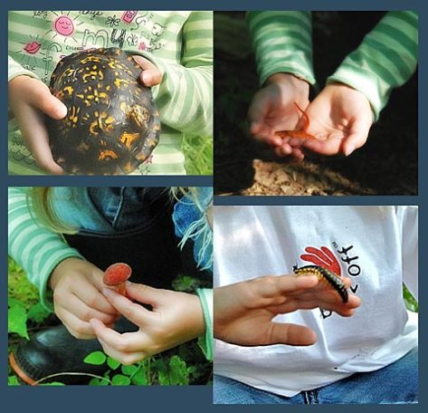 Nature: In The Hands of Our Children