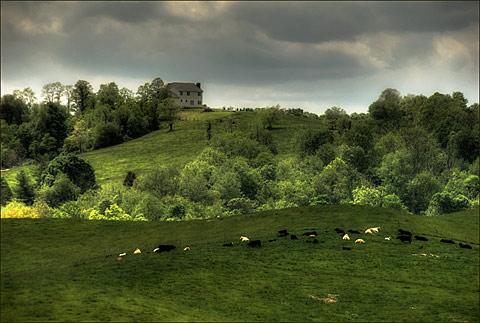 Floyd County Farm Scene