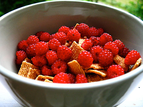 Wineberries for breakfast