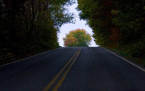 road_arch.jpg