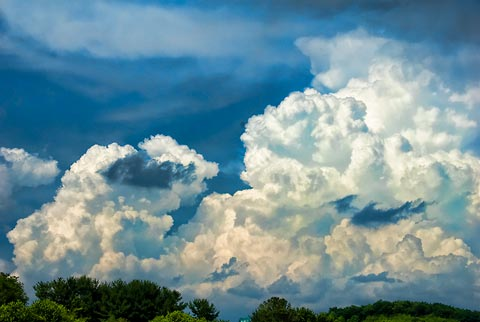 Cloud-watching: not nets, field guides or specimen jars required