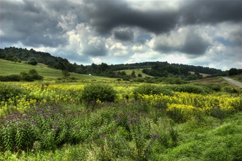 Autumn Meadow before a late Summer Storm