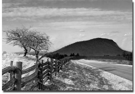 Symbolic Essense of Floyd: Split Rail Fence, the BR Parkway, The Buffalo