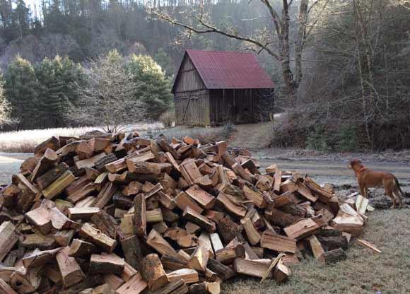 Firewood: Heats you twice. Or more.