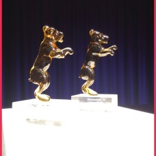Chris-B.-Berlinale-2014032