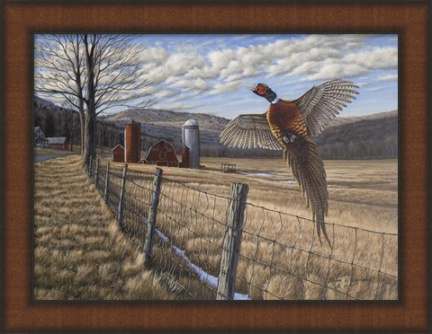 Framed Bruce Dumas Pheasant Print