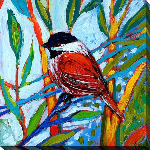 Bird Xvi - Framed Canvas Art