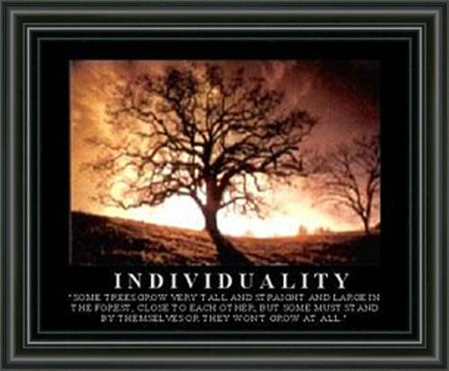Individuality Framed Canvas Art