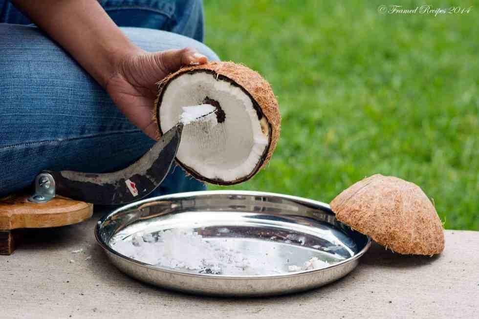 DSC_9360_Coconut_6