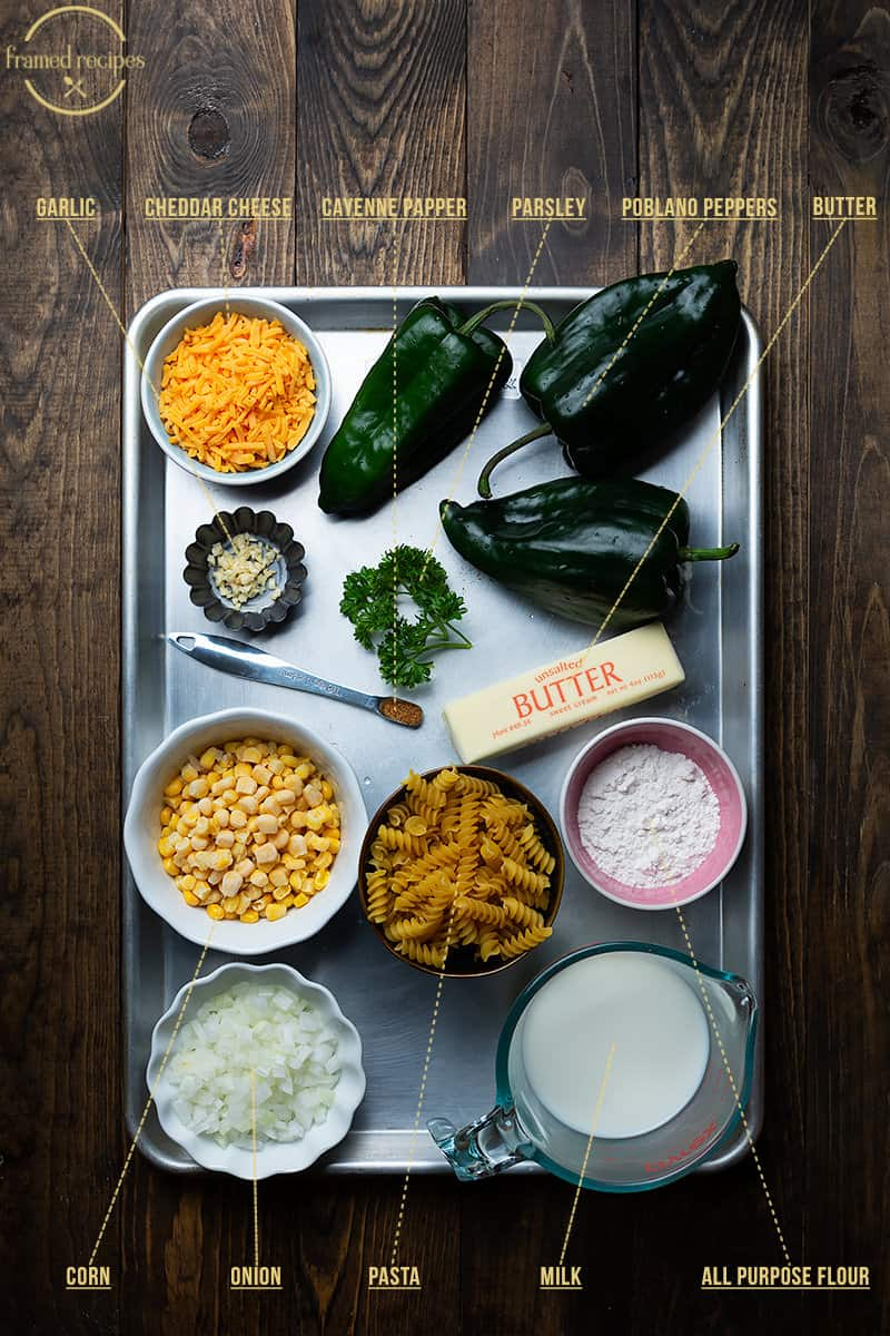 ingredients to make creamy poblano pepper pasta - poblano peppers, butter, all-purpose flour, milk, onion, corn, pasta, cayenne pepper, parsley, garlic and cheddar cheese