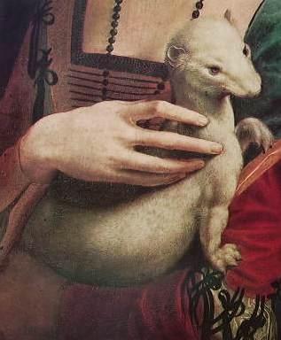 Leonardo - ritratto di donna con ermellino