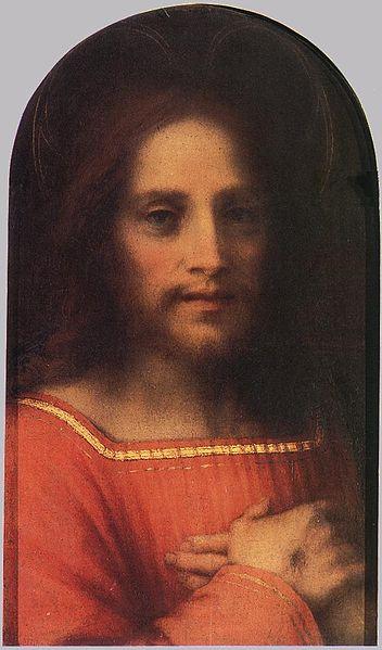 Andrea del Sarto: Salvatore