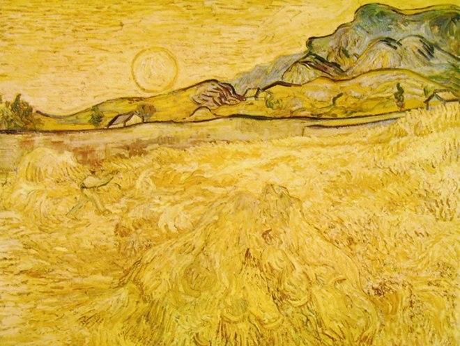 Campo d'orzo con falciatore al tramonto