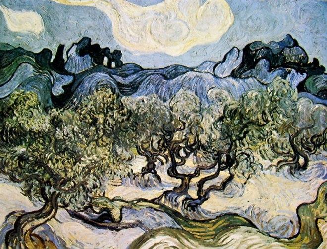 Oliveto con nuvola bianca